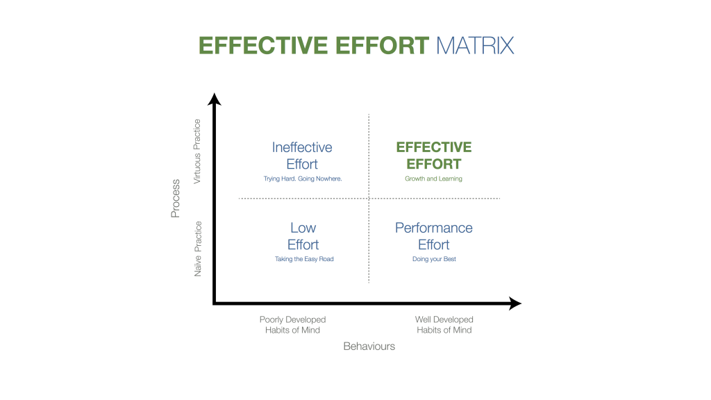 Effective Effort Matrix (11)