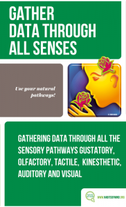 10 – Gather Data Through All Senses-min