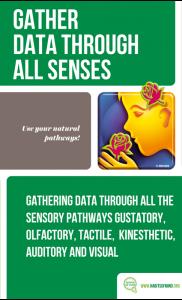 10 – Gather Data Through All Senses-min