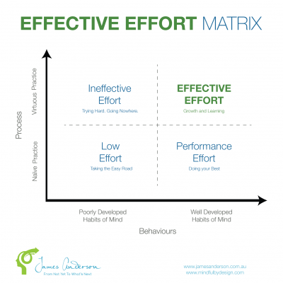 Effective Effort Matrix